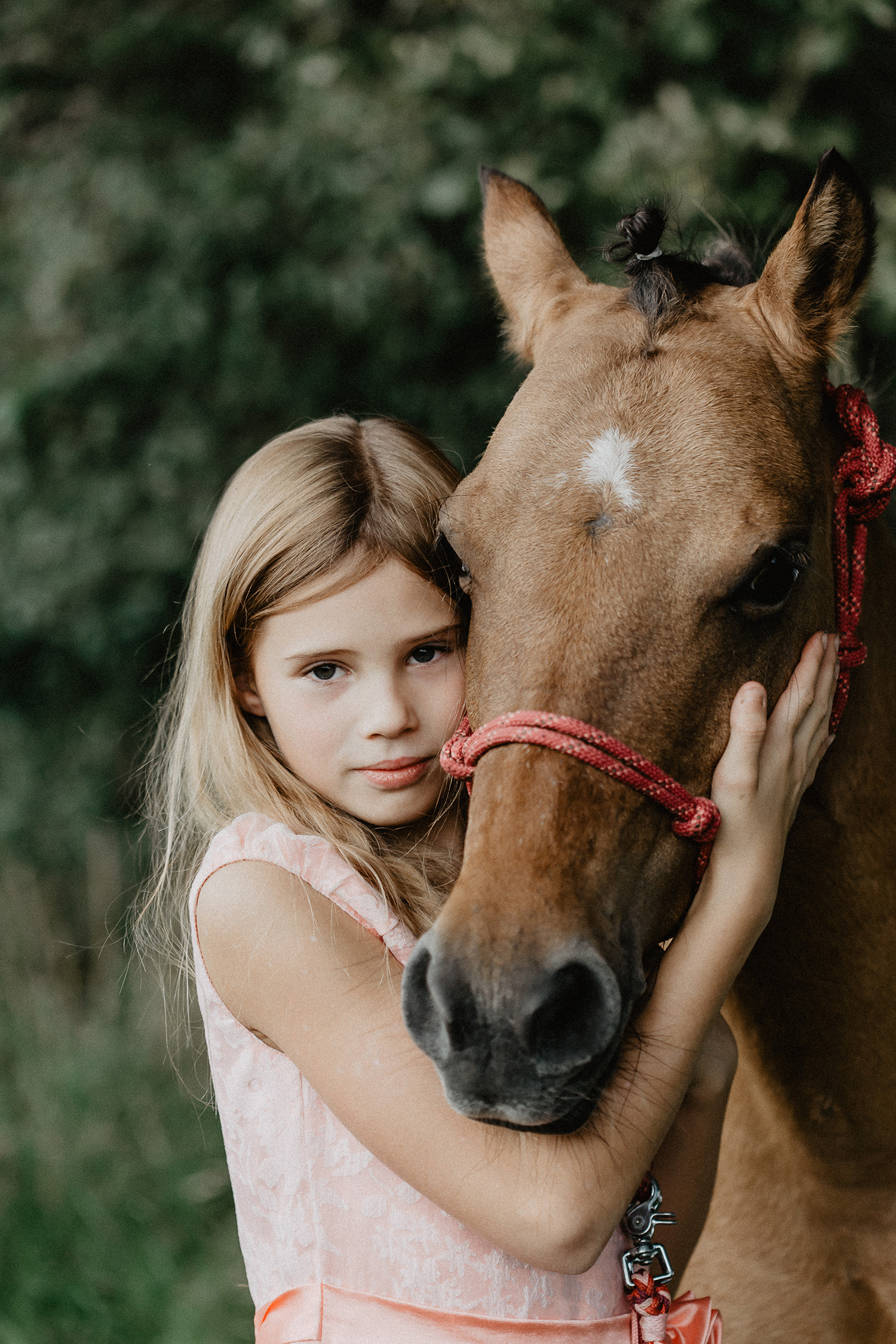 Kinderfotograf Pferdefotograf Meppen